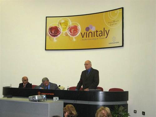 Vinitaly07